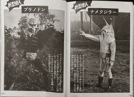 rider45_zukan21.jpg